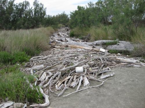 il fiume di legno.jpg